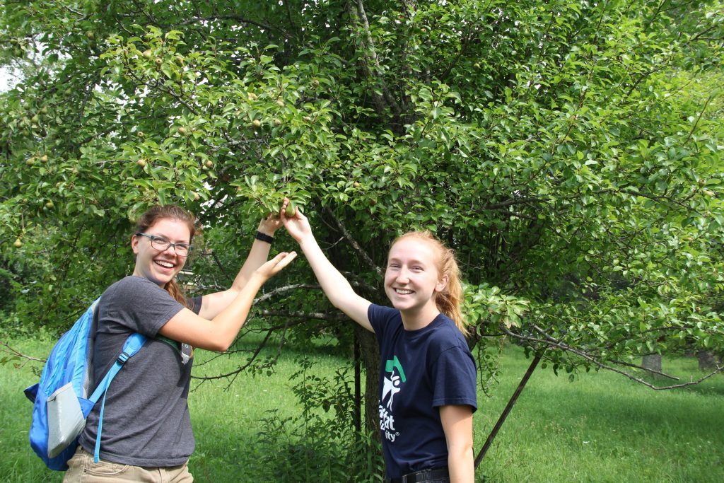 Interns Hannah Kasun and Natalie Brunner stand under a fruit tree at the Farley Center. Photo By: Trina La Susa