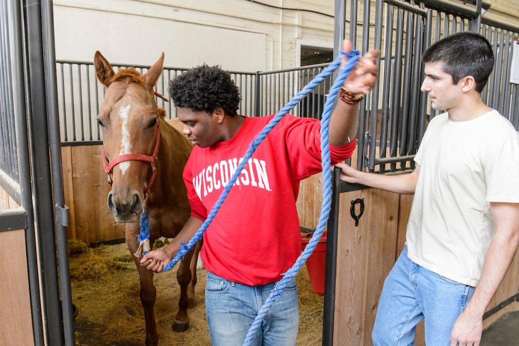 Students in professor John Parrish's Animal Science 375: Equine Reproductive Management class