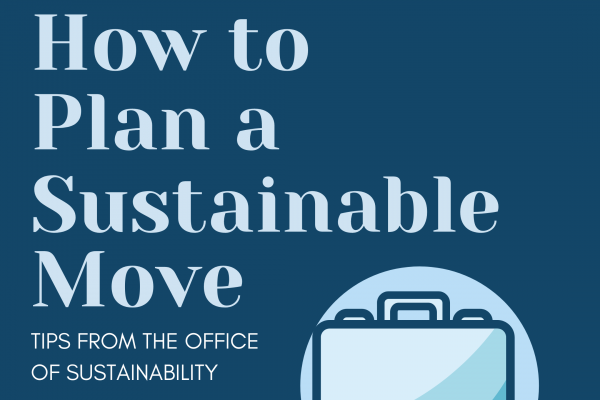 How to Plan a Sustainable Move Instagram image