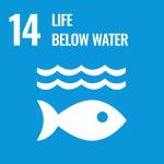 UN Life Below Water icon