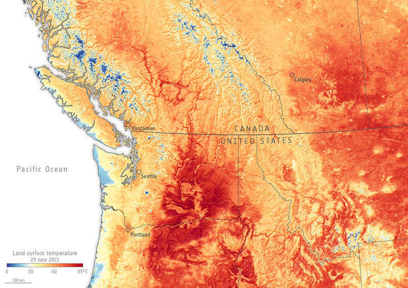 Land surface temperature map of the northwestern United States and western Canada from June 30, 2021.